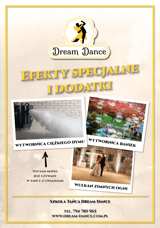dreamdance_plakat_wytwornice-01